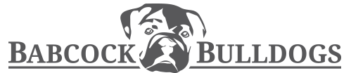 babcockbulldogs.com